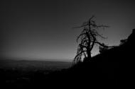 Ansel Mt.